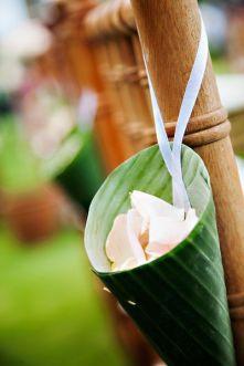 tropical petali
